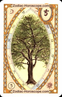The tree, monthly Love and Health horoscope February Capricorn
