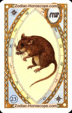 The mice, monthly Love and Health horoscope May Capricorn
