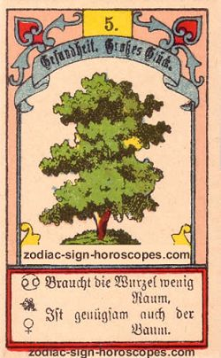 The tree, monthly Capricorn horoscope August